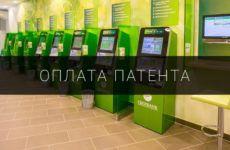 Оплата патента на работу через терминал Сбербанка — инструкция.